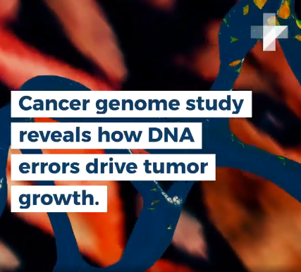 Genome study reveals new information about tumors